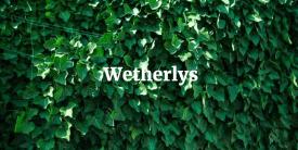 Wetherlys