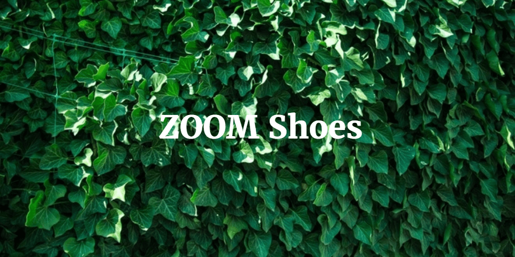 ZOOM Shoes